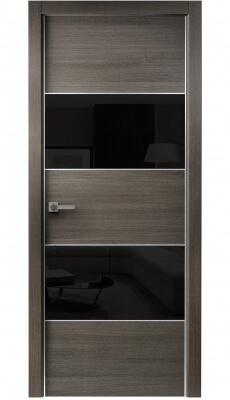 Titanium Interior Door Gray Chestnut / Black Glass